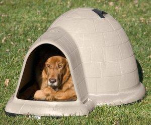 фото домик для собаки своими руками